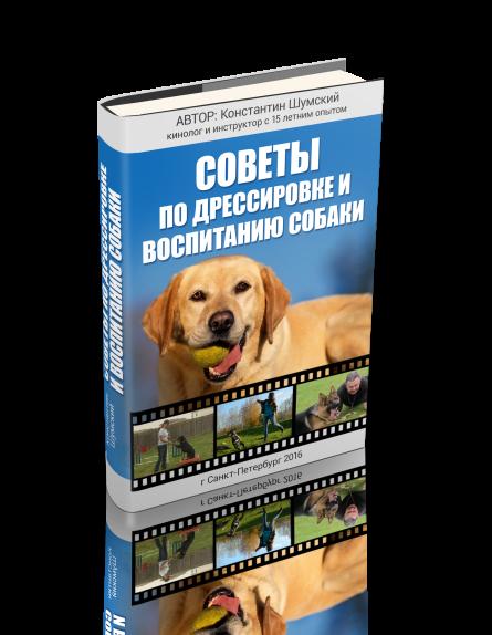 Константин шумский книга послушная собака скачать