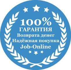 """Мультимедийный видеокурс """"Работа онлайн - работа для всех"""""""